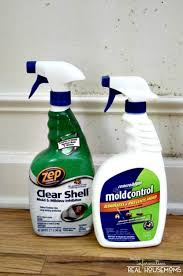 Remove Mold From Your Home And Keep It From Coming Back Real - Removing mildew from bathroom walls 2