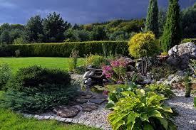 giardini rocciosi in ombra come realizzare un giardino roccioso piante pietre e consigli