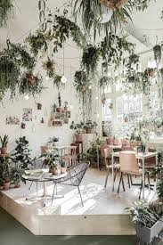 trending on gardenista the indoor garden plants restaurants