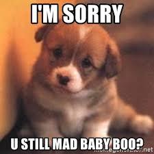 Baby You Still Mad Meme - i m sorry u still mad baby boo cute puppy meme generator