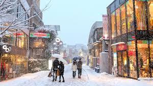 tokyo snow 2014 雪の東京