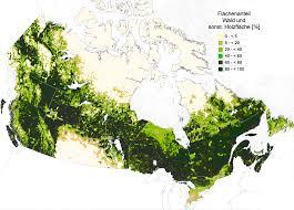 kanada fläche der wald in kanada und seine nutzung waldwissen net