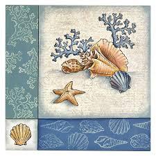 30 best stendous seashells images on seashells
