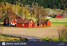 farm houses red farm houses set in old rural landscape sweden stock photo