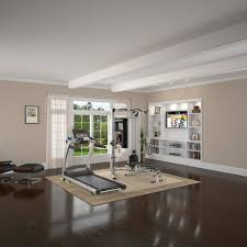 Home Gym Decor Ideas Interior Design 19 Home Gym Decorating Ideas Interior Designs