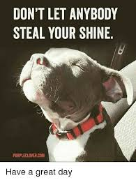 Have A Good Day Meme - don t let anybody steal your shine purpleclovercom have a great