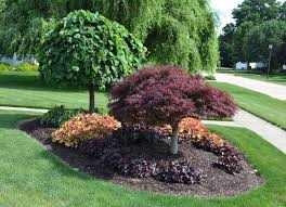 amazing landscaping ideas for circular driveway kimberly porch