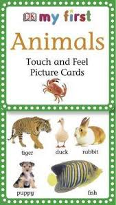 my touch and feel picture cards animals dk 9780756615154
