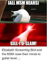 25 best memes about msm 25 best memes about screaming bird screaming bird memes
