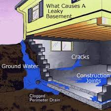 basement waterproofing benedetto remodeling