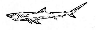 tribal shark by mirri66 on deviantart