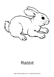 rabbit colouring print