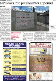 the napier mail read online on neighbourly