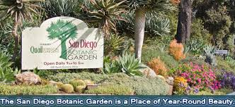 Botanical Gardens Discount Encinitas S San Diego Botanic Gardens Is World Renowned