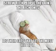 Rich Cat Meme - screw rich people they ain t the rich ones its their cats that get