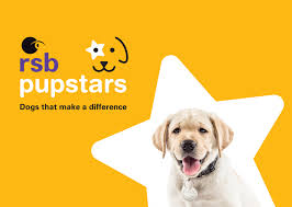 rsb assistance dogs program rsb