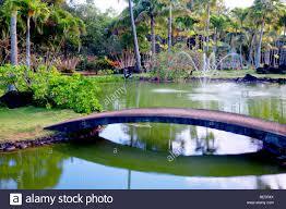 garden ponds stock photos u0026 garden ponds stock images alamy