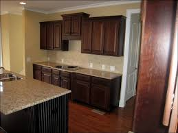 Kitchen Cabinets Closeouts by Tall Kitchen Cabinets 10 Best Ideas About Kitchen Cupboard Paint