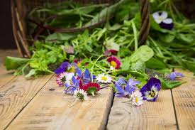 edibles flowers growing edible flowers in your garden