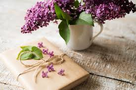 purple lilac purple lilac bouquet in vase and present laid on wooden table by