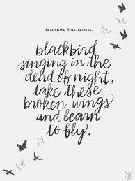 best 25 blackbird ideas on pinterest crows ravens black