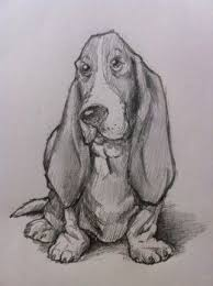 421 best drawings images on pinterest drawings draw and drawing