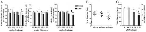 triclosan impairs excitation contraction coupling and ca u207a dynamics
