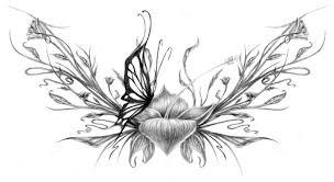 butterfly landing by poofydotts on deviantart