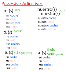 possessive adjectives lessons tes teach