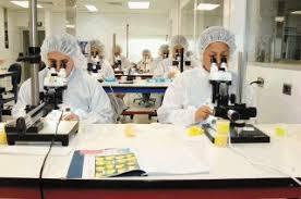 Cientificos con microscopio