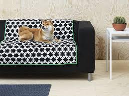 sofas for short people doge b rarian mlis dogebrarian twitter