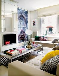 28 ideas about zebra rugs interior designs home
