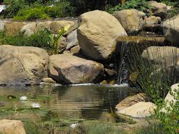 Water Rock Garden Garcia Rock And Water Design Trends Including Garden Pond