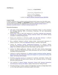 Director Of Ecommerce Resume Resume Writer Training Program Write My Government Dissertation