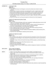 exle cv resume farm manager resume sles velvet
