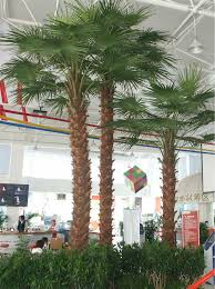 plastic palm tree palm tree manufacturers palm tree wedding