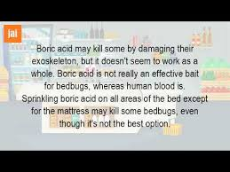 boric acid for bed bugs can you use boric acid to kill bed bugs youtube