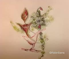 the art of seeing robin sierra paintings