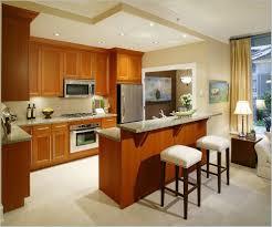 Indian Kitchen Interiors Small Kitchen Interior Design Ideas In Indian Apartments Home Design
