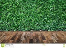 wooden leaves wall wood floor with green leaves wall background stock photo image