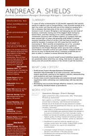 branch manager resume samples visualcv resume samples database