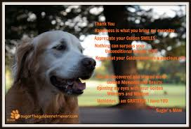 give thanks golden woofs