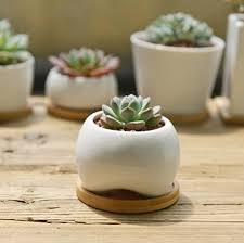 Ceramic Succulent Planter by Sun E Modern White Ceramic Succulent Planter Pots Mini Flower