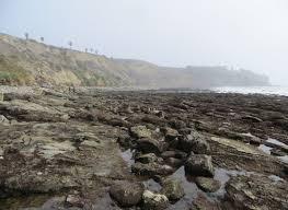 beaches in san pedro los angeles ca california beaches