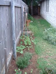Wacky Garden Ideas Interior Ideas Hummingbird Garden Ideas