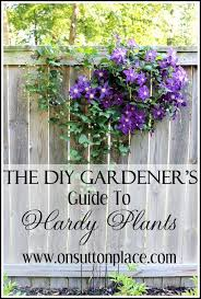 Garden Planting Zones - hardy plants the diy gardener u0027s guide hardy plants hardy