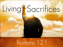 sermons on thanksgiving to god your reasonable service u2013 bible student ministries