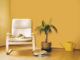 nerolac paints colour combinations for living room lemonade mag com