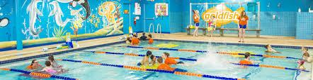 goldfish swim of ann arbor mi teach your toddler to swim