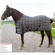 Weatherbeeta Combo Stable Rug Horse Rugs Sale Roselawnlutheran